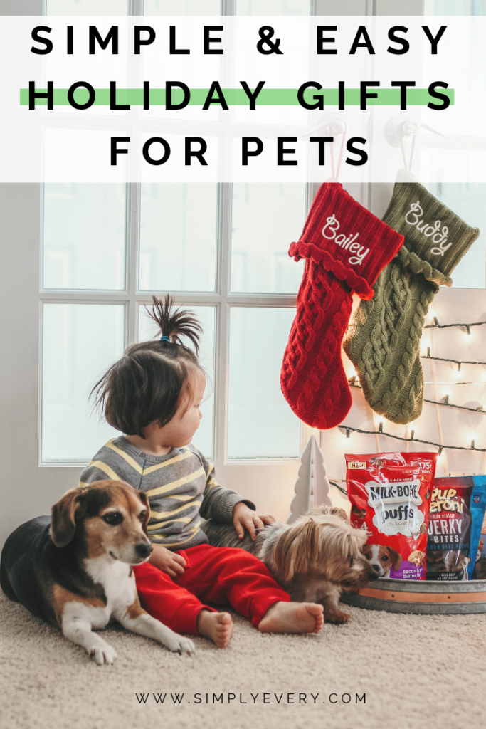 Simple & Easy Holiday Gift Ideas for Pets