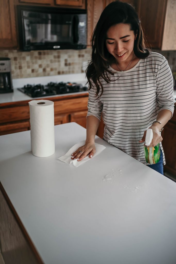 Cleaning with Clorox and Viva